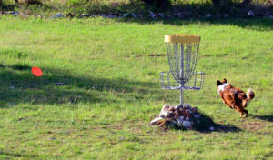 how to throw a roller in disc golf